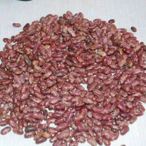 ETHIOPIAN RED SPECKLED KINDEY BEANS